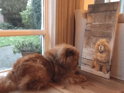 Dierenfoto op canvas