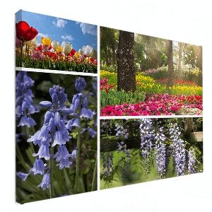 collage op canvas natuurfoto's